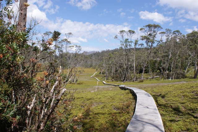The Crater Valley Boardwalk