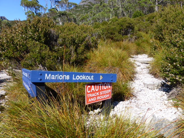 Start of the Track to Marions Lookout