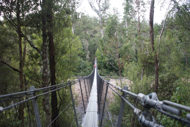 The Swinging Bridge Over the Huon River