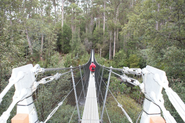 Swinging Bridge Over the Picton River