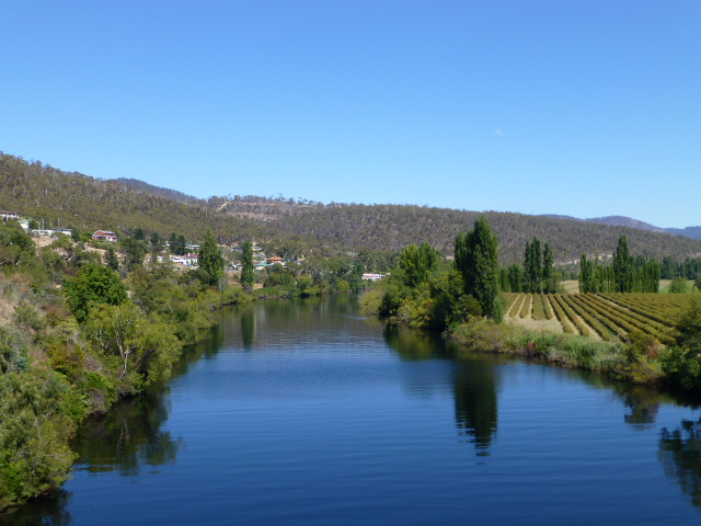 Derwent River Looking West from the Traffic Bridge in New Norfolk