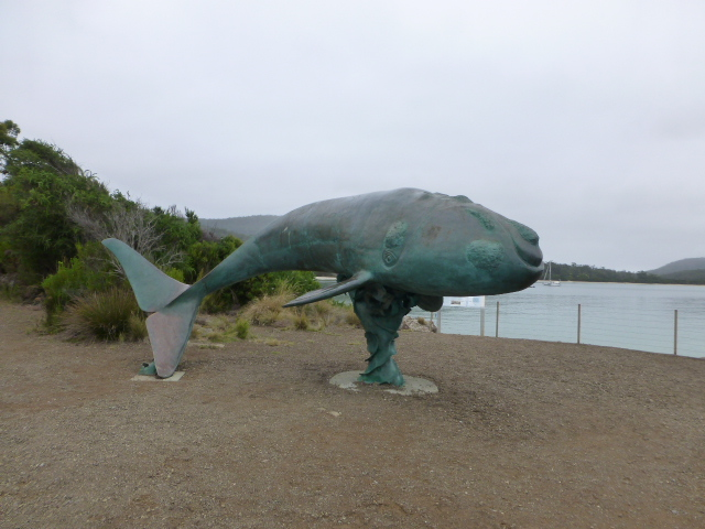 The Whale Sculpture