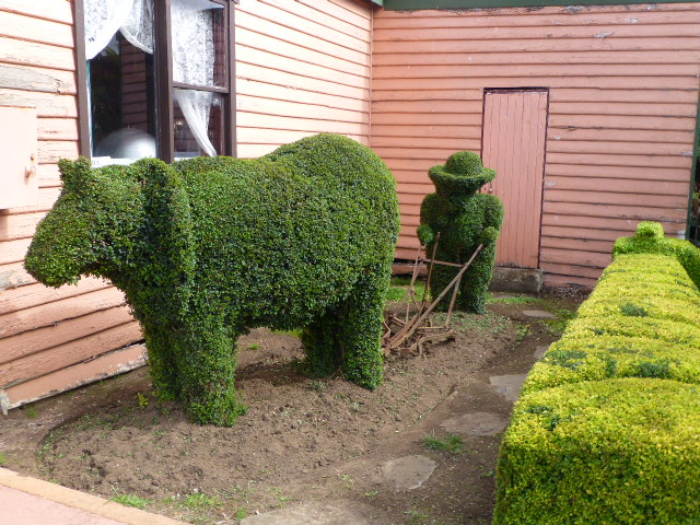 Topiary in Railton #1