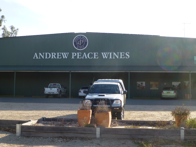 Andrew Peace Winery