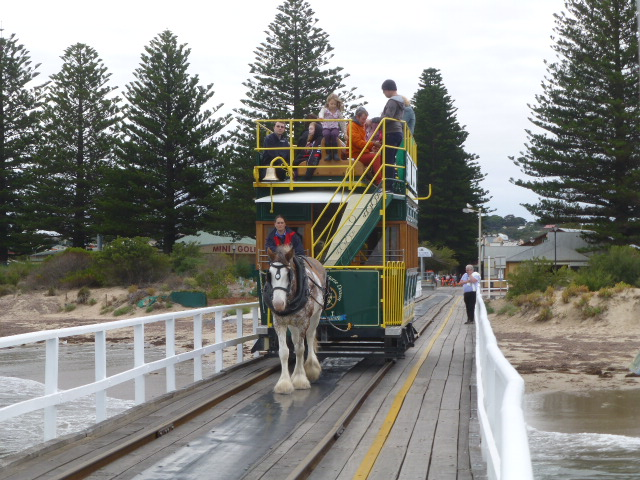 The Horse Drawn Tram at Victor Harbor