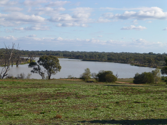 The Murray River on the Outskirts of Renmark