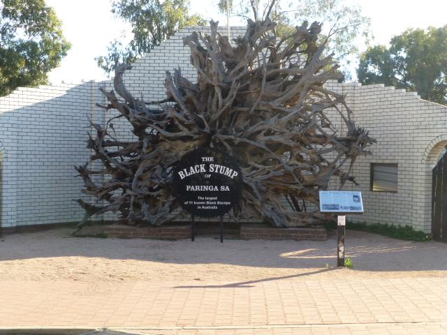 The Black Stump at Paringa