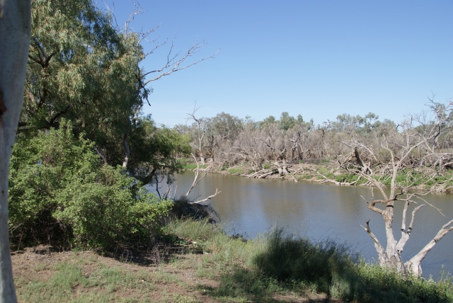 The Banks of the Warrego River at the Caravan Park