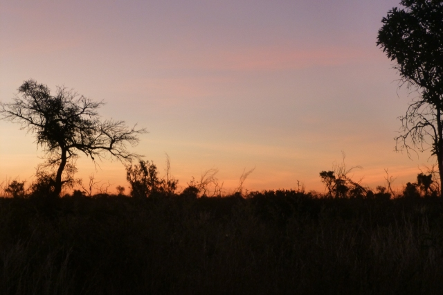 Sunrise at 41 Mile Bore
