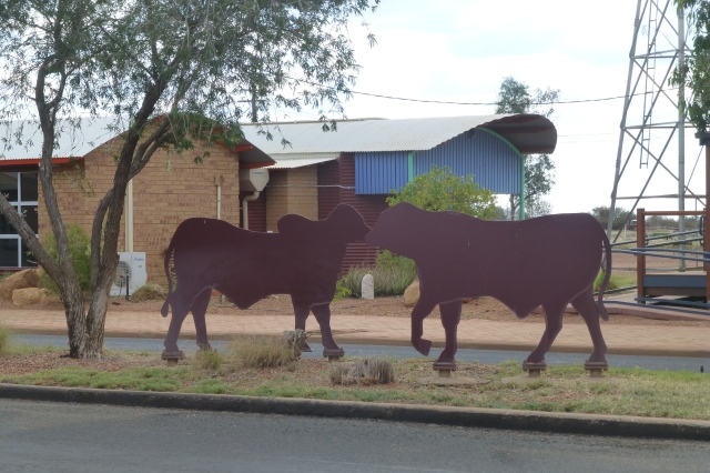 Bull silhouettes in Main Street Quilpie
