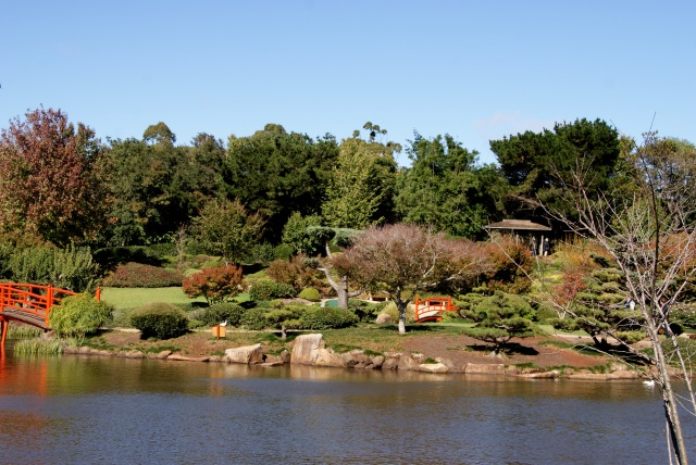 Across the water at the Japanese Gardens