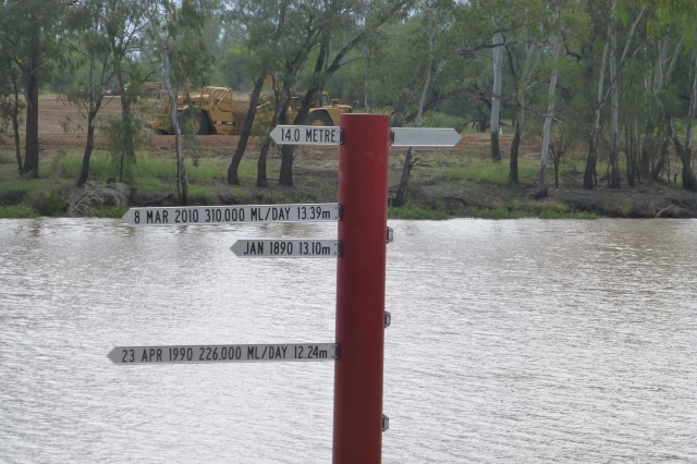 Recorded flood heights on the Balonne at St George