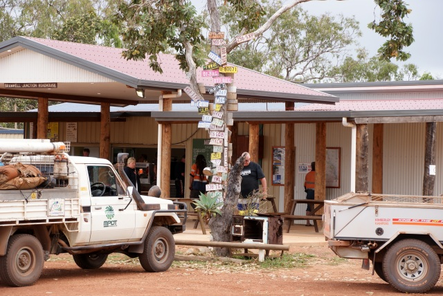 Number plate tree at Bramwell Junction roadhouse