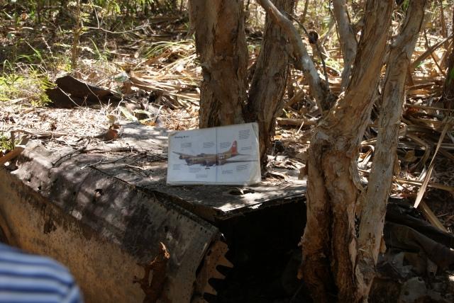 Plane wreck on Horn Island