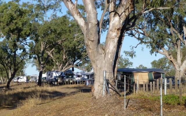 Other Campers at Fletcher Creek