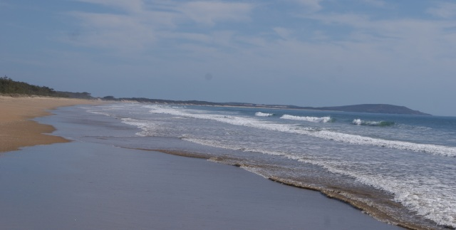 Driving along the beach adjacent to Eurimbula National Park