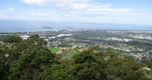Views, views, views