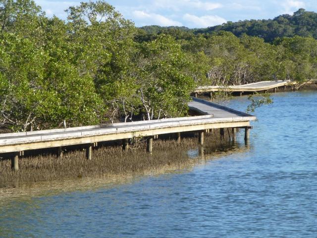 The Board Walk venture into Urunga Lagoon