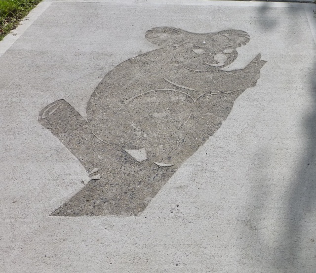 Koala Imprint in Footpath