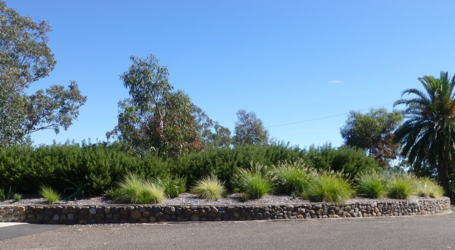 Gardens at Oxley Lookout