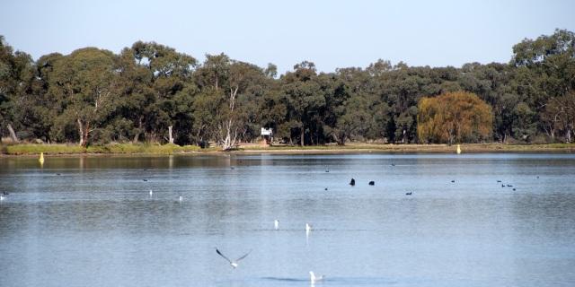 The Lake at Boort