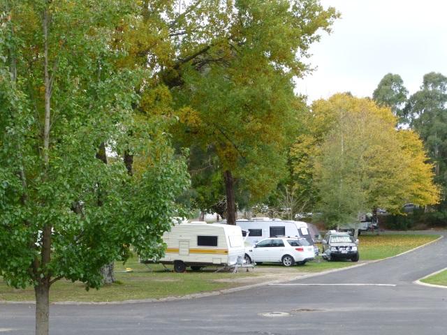 Our caravan site