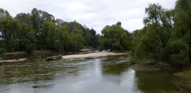 Murrumbidgee River adjacent to the caravan park