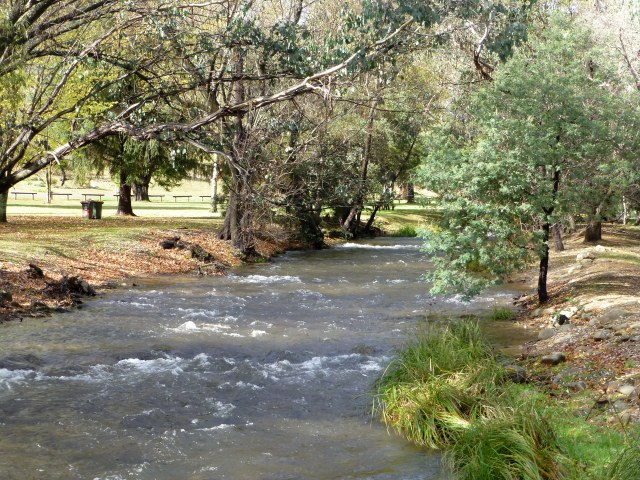 The stream at Harrietville