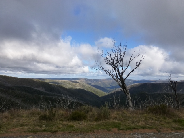 A view of the valley below Mt Hotham