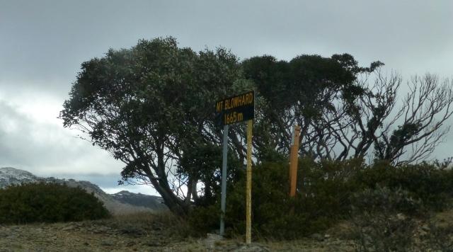 Mt Blowhard