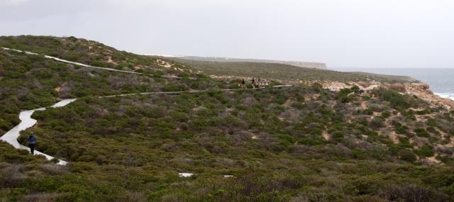 Coastal Cliffs at Kalbarri - Pathways