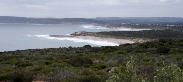 Looking back toward Kalbarri from Red Bluff