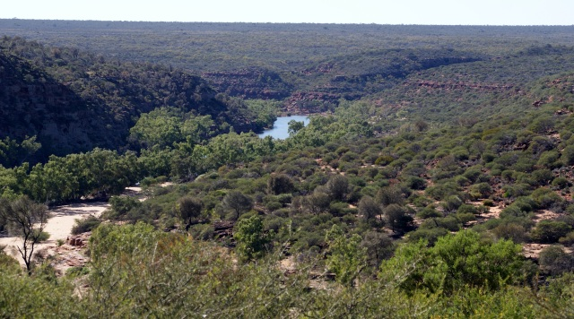Murchison River from Ross Graham Lookout