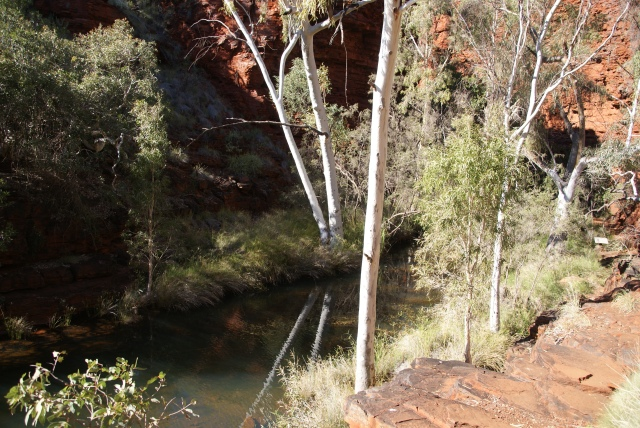 Stream through Weano Gorge