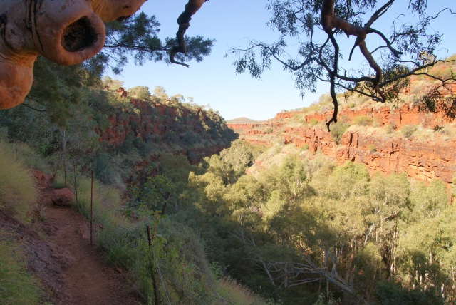 Looking along Dales Gorge on the path back to the rim