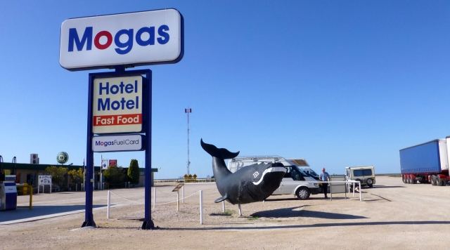 Nullarbor Roadhouse whale
