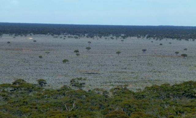 The plains below the Madura Pass
