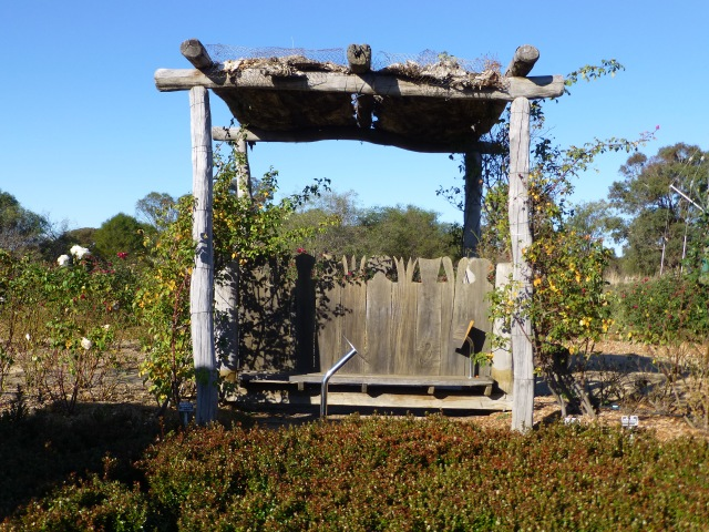 Unique seat in the Rose Maze