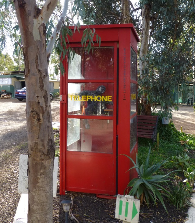 Old telephone box complete with small Spiderman inside at Kojonup Caravan Park