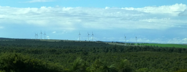 Wind Farm north of the Nilgen Lookout