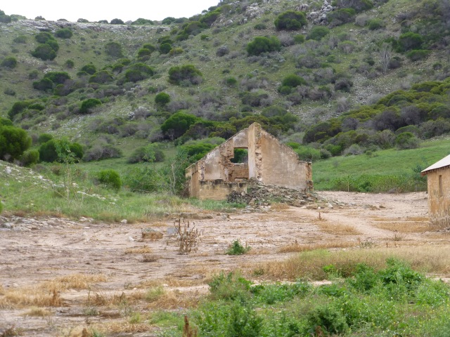 Part of the ruins at the Convict Hiring Depot