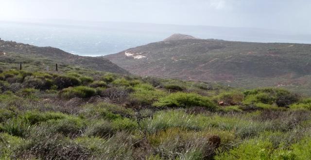Coastal Cliffs at Kalbarri