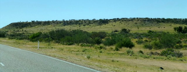 Low sand hills on the road to Carnarvon