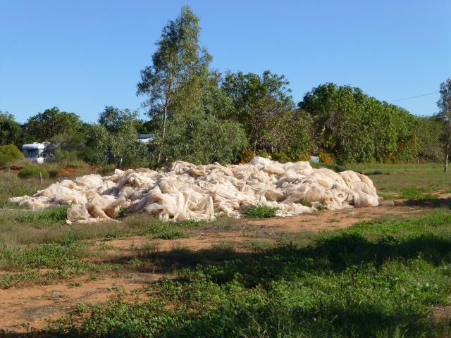 A large pile of netting which we think may have been blown off crops during a recent cyclone at Carnarvon