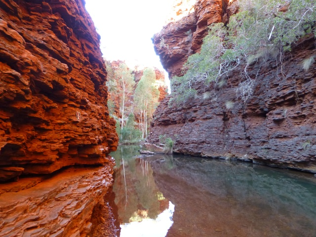 Pool in Weano Gorge