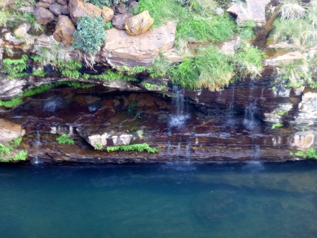 A ledge above Circular Pool in Dales Gorge