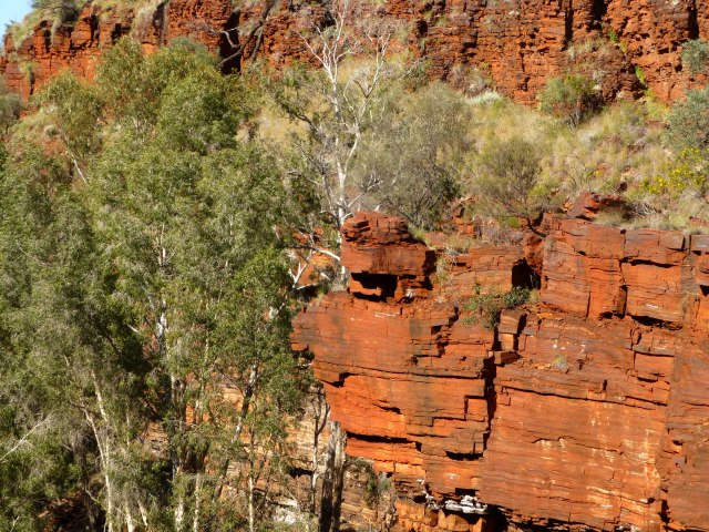 Gorge walls above Fortescue Falls