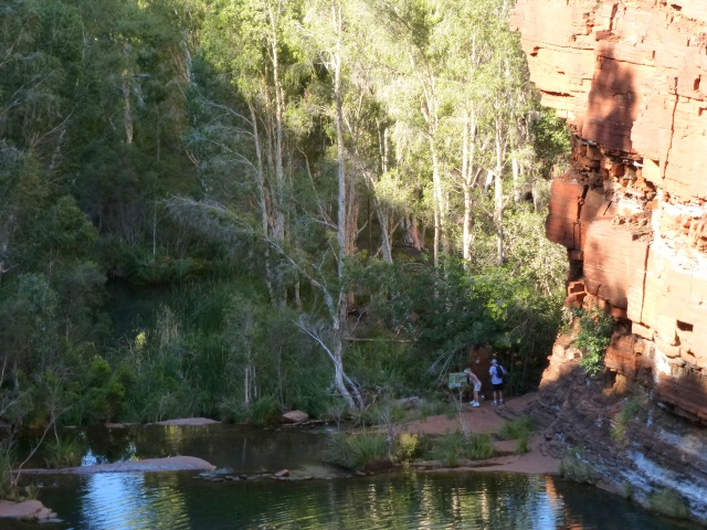 The pool below Fortescue Falls