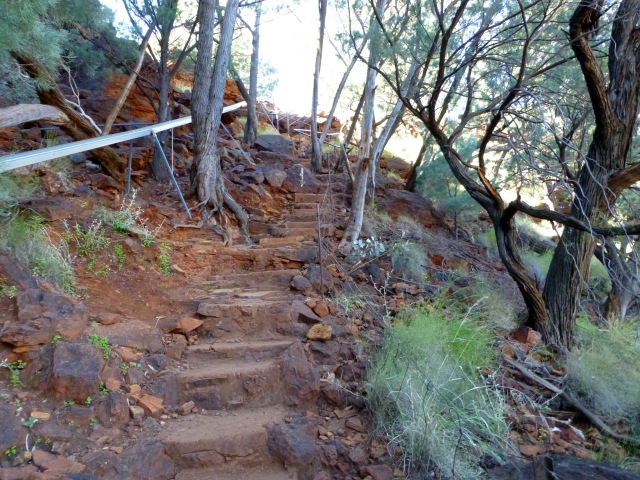 Steps up to the rim from Fortescue Falls