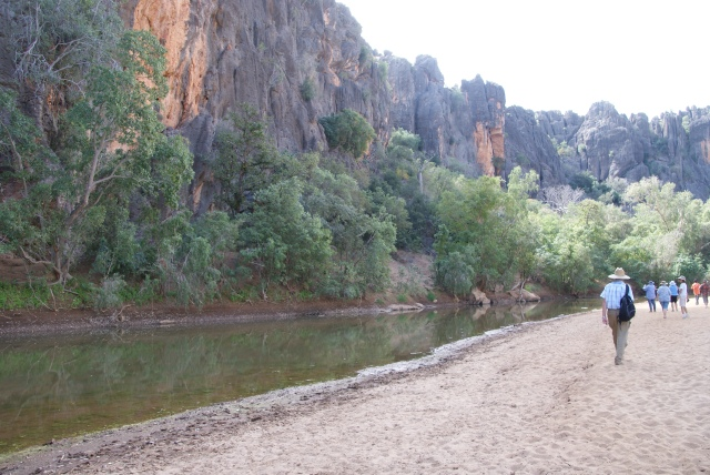 A view in Windjana Gorge